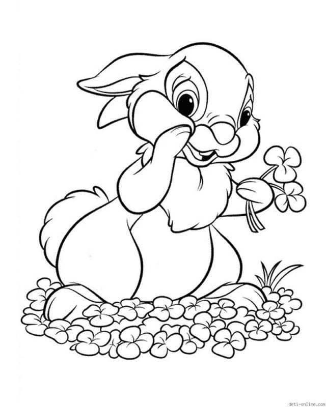 Раскраски о животных заяц